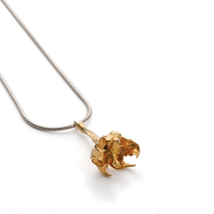 picture of a necklace